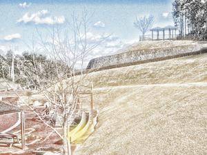 冬の公園.jpg